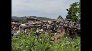 Ndanifor Permaculture Eco village: Permaculture the African Way