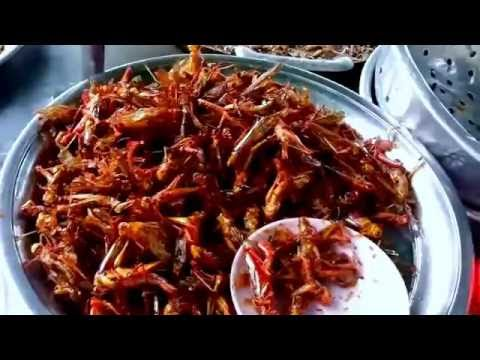 Asia Food - Roasted Insects On Youtube - Asia Street Food - Cambodia Street Food