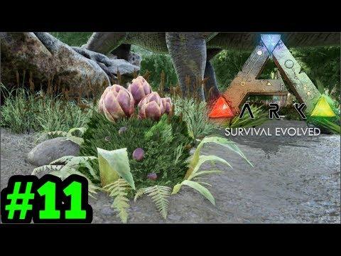 Truy Tìm Hoa Plant Species X Phòng Thủ Nhà  | ARK Gaming Online | Ark Survival Evolved - Tập 11