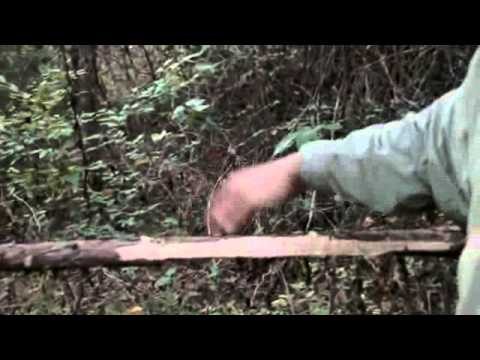 how to build a snare trap for deer