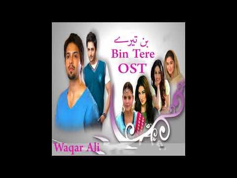 Bin Tere | Tv Serial Ost | Waqar Ali | Hum Tv