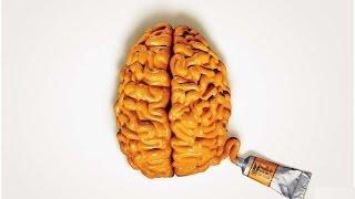 5 интересных фактов о человеческом мозге
