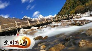 《生财有道》 四川省小金县四姑娘山:东方的阿尔卑斯 户外登山者的天堂 | CCTV财经