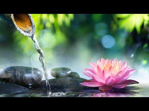 Relaxing  Reiki Healing  Calm  Meditation Zen Relax Spa Yoga Sleeping ☯1930