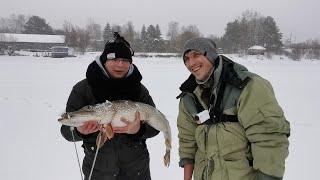 Рыбалка в Подмосковье Истринское водохранилище Поимки за Январь 2021