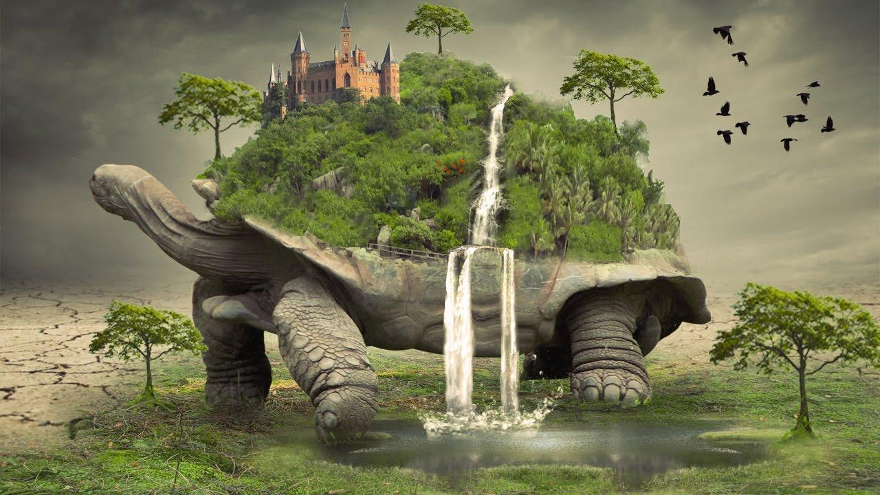 Epic Animal Wallpapers Big Tortoise Photo Manipulation Photoshop Tutorial Cc