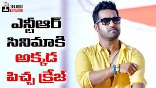 ఎన్టీఆర్ మూవీ కి అక్కడ సూపర్ క్రేజ్ | Huge Craze for Jr NTR Movie | 2017 Latest Telugu Movies