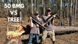 Can you actually cut down a tree with the mighty 50BMG?!? We find o...
