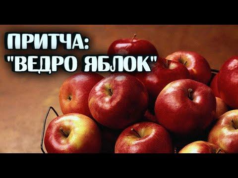 Ведро яблок/Притча, которую хочется цитировать
