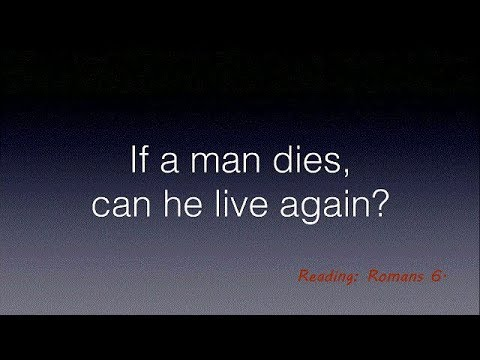 If a Man Dies: Can He Live Again?