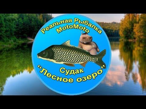 Как поймать Судака на Лесном озере | Реальная Рыбалка