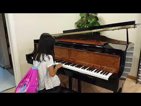 Playing a grand piano  (ode to joy  by beethoven)