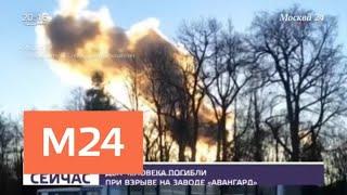 По факту гибели рабочих при взрыве на заводе в Гатчине возбудили дело - Москва 24