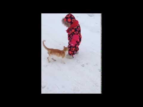 CAT RKO!