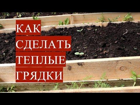 Cтатья о выращивании клубники, за которой легко ухаживать