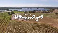 Yritteliäs Hämeenkyrö - Yrjölän marjatila