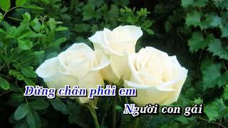 HD Hoa Trắng Jimmy Nguyễn Karaoke