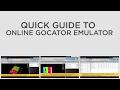 Quick Guide to Online Gocator Emulator