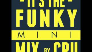 The Funky House Mix - 30 minutes long! Cru mix