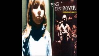 Pig Destroyer - Yellow Line Transfer