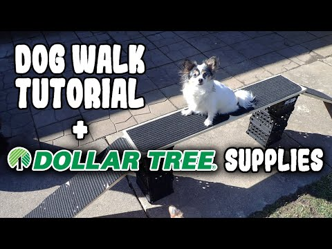 How To Make A Dog Walk- Fast & Inexpensive! Dog Agility Training Equipment At Home!