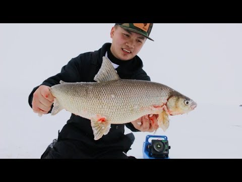 Fishing For Big White Fish- Green Bay