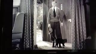 Night Must Fall 1937 Robert Montgomery and the kitty cat. Great music by Edward Ward.