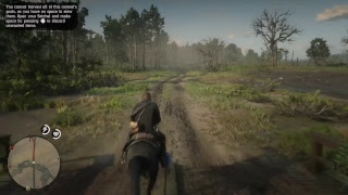 The boring stream   RED DEAD REDEMPTION 2 pt.10