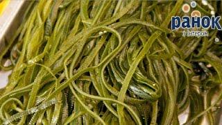 Какая морская капуста полезна для здоровья? - Утро с Интером