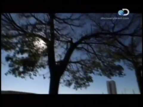 Documentário: Brasília: A Construção de Um Sonho (Dublado) - Discovery Channel