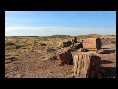 Petrified Forest National Park travel guides Arizona USA