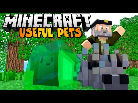 [1.6.4] Useful Pets Mod Download | Minecraft Forum