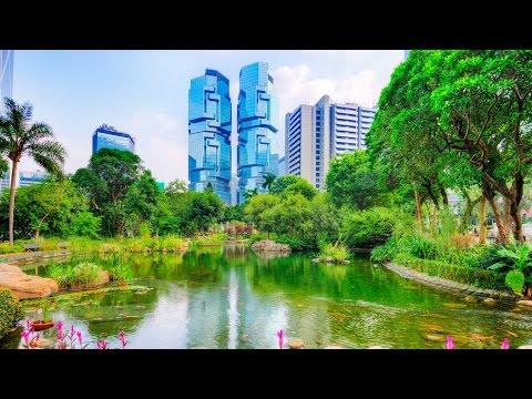 Hong Kong Top Things To Do Viator Travel Guide