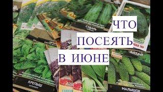 Что Посеять В Июне. Сорта Укропа, Сорта Огурцов и многое другое.