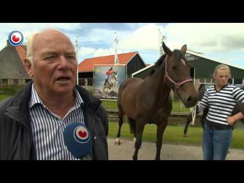 Paardenfokkerij Wiepke van de Lageweg krijgt grotere stal