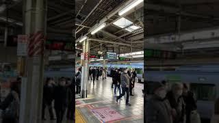 No.311日本の鉄道 JR 湘南新宿ライン池袋駅