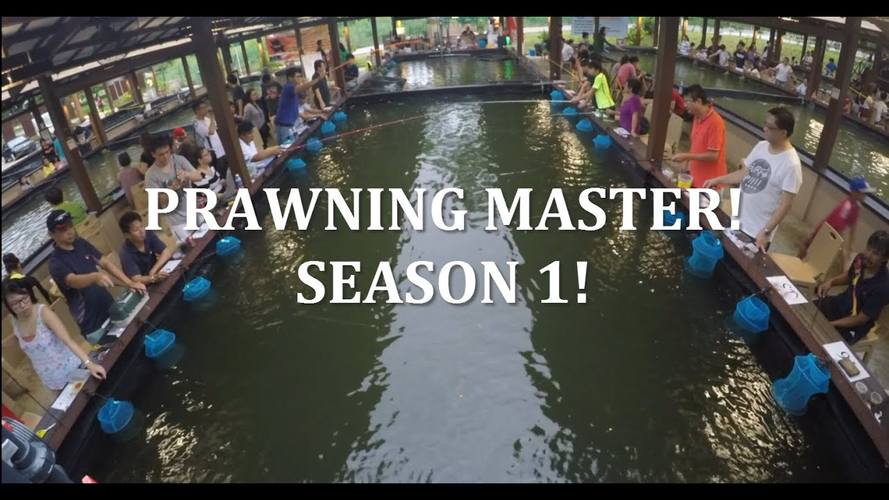 Singapore Prawn Fishing - Prawning Master Season 1 Finals! シンガポールでえび釣りに挑戦