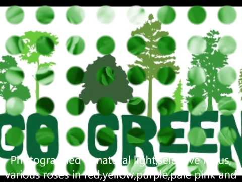 Greenery-Awesome Video on Go Green Initiative.