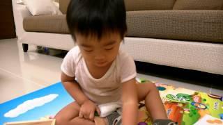 1歲9個月的玩具