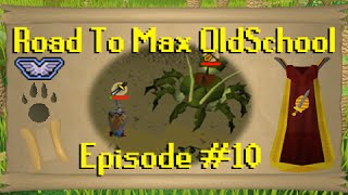 road to max oldschool ep 10 piety quests 125 combat