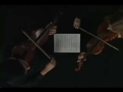 Mirror violin duet