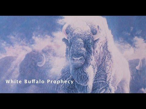 The White Buffalo Prophecy