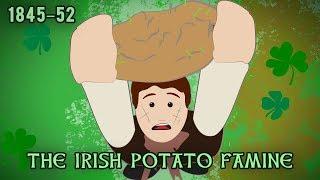 The Irish Potato Famine  1845–1852
