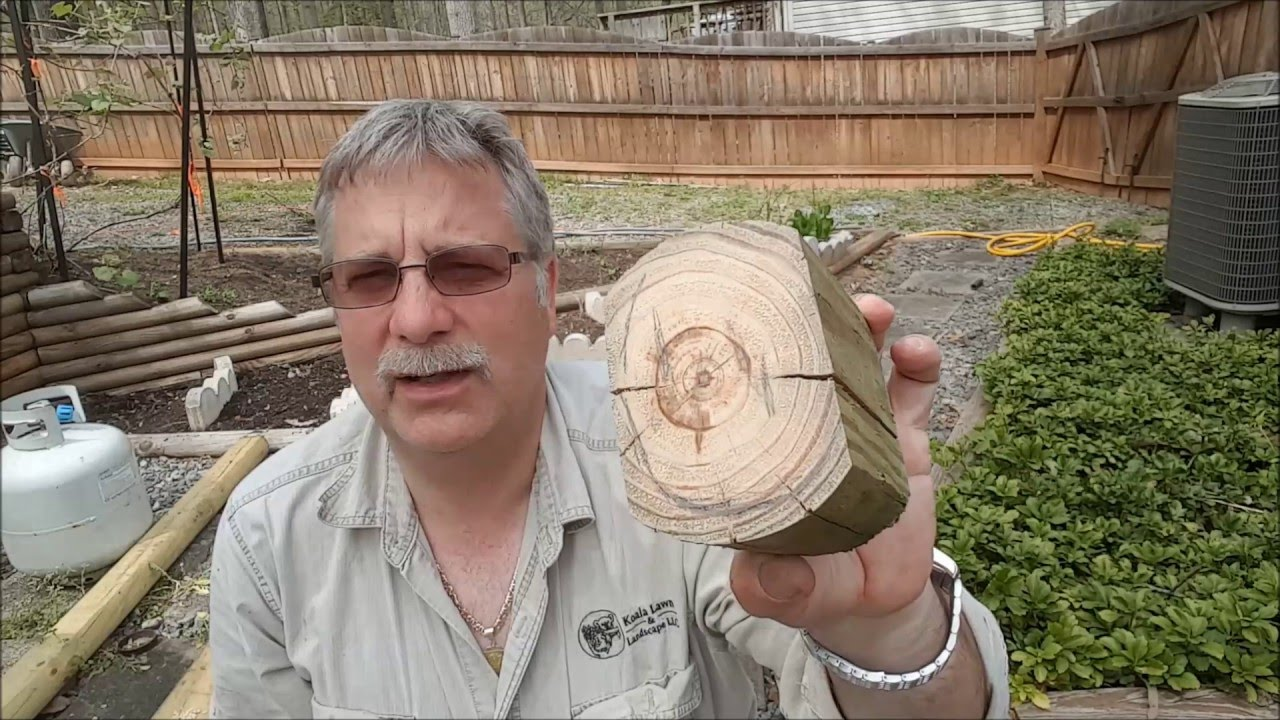 how to make wood rot