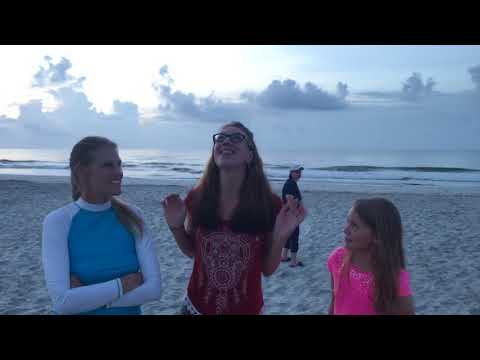2017 Solar Eclipse: Part 1, from Huntington Beach State Park, SC