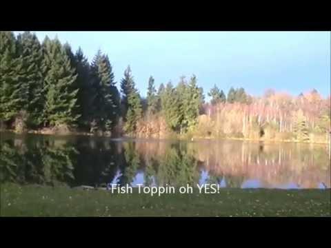 avalon fisheries france