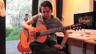 Blood Brothers Acoustic (Iron Maiden) - Video Lesson by Thomas Zwijsen (Nylon Maiden)