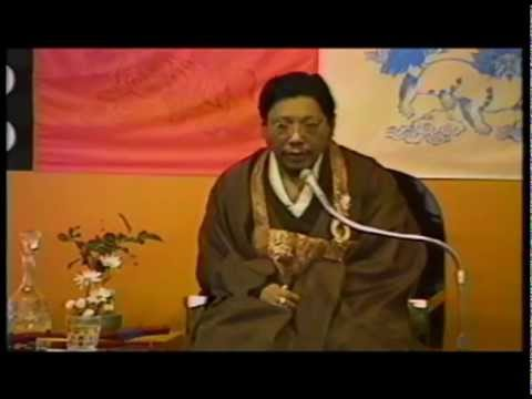 Prajna: As if the Buddha Were Talking in Your Brain -Chogyam Trungpa Rinpoche. Shambhala