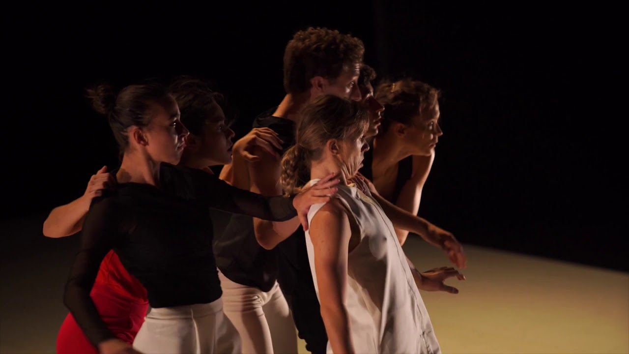 Dog Talks - Madrid en Danza en Sala Cuarta Pared