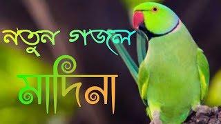 bangla gojol 2019 || Bangla New Islamic gojol 2019 ||md imran MD mominur Islam gojol